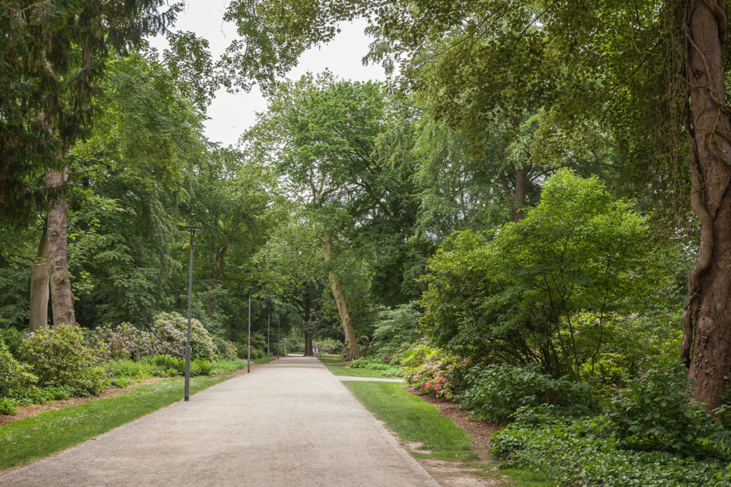 Die Wege im Bunten Garten werden von vielen verschiedenen Baumarten gesäumt.
