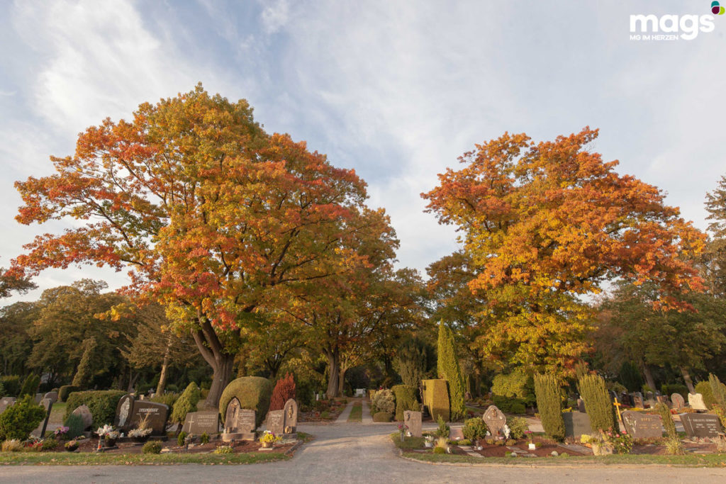 Friedhof Giesenkirchen