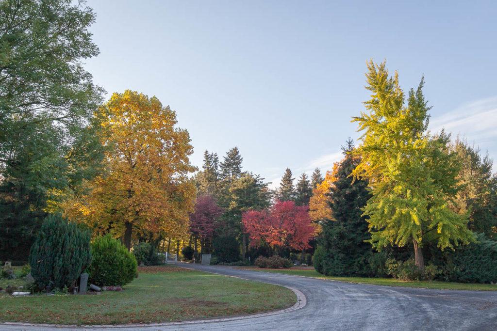 Friedhof Ohler in bunten Herbstfarben getaucht.