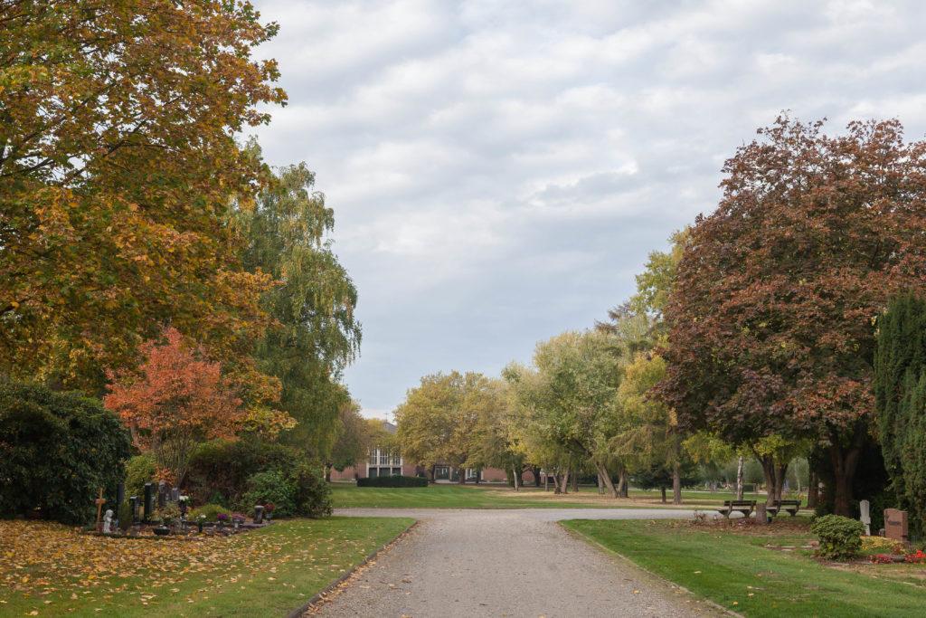 Friedhof Preyerstraße im Herbstgewand.